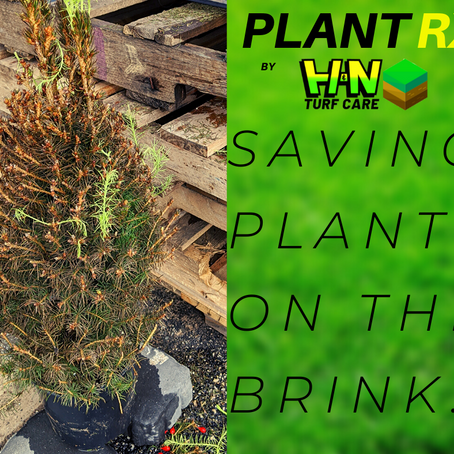 Plant RX To The Rescue!