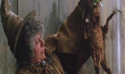 On Mandrakes Harry Potter Transplanting