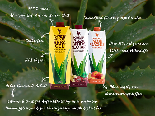 Aloe Vera Gel Flyer 1000er Pack