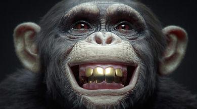 nki-winimax-monkey-vray.jpg