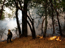 A hand crew monitors a backfire set behind homes to fight the Glass Fire burning along Tucker Road in Calistoga, Calif. Tuesday, September 29, 2020. The Glass Fire has burned more than 42,000 acres by Tuesday morning and is 0% contained.