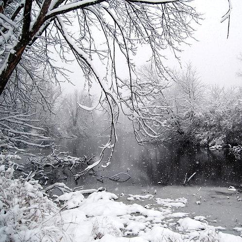 Snowy Creek, 2015
