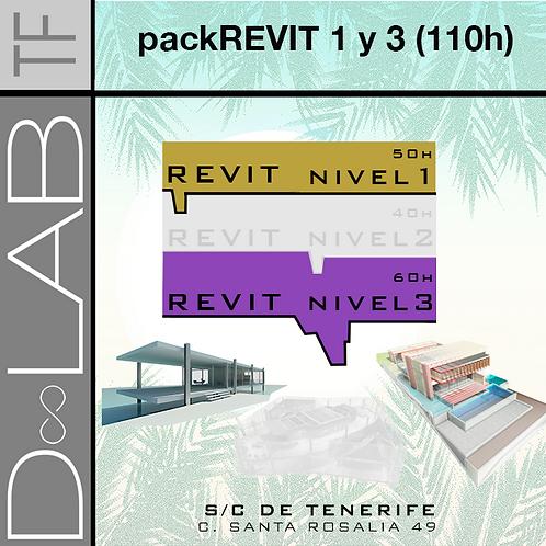 Copia de PACK REVIT NIVEL 1 Y 3 - 110 HORAS