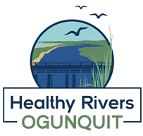 Healthy%20logowix_edited.png