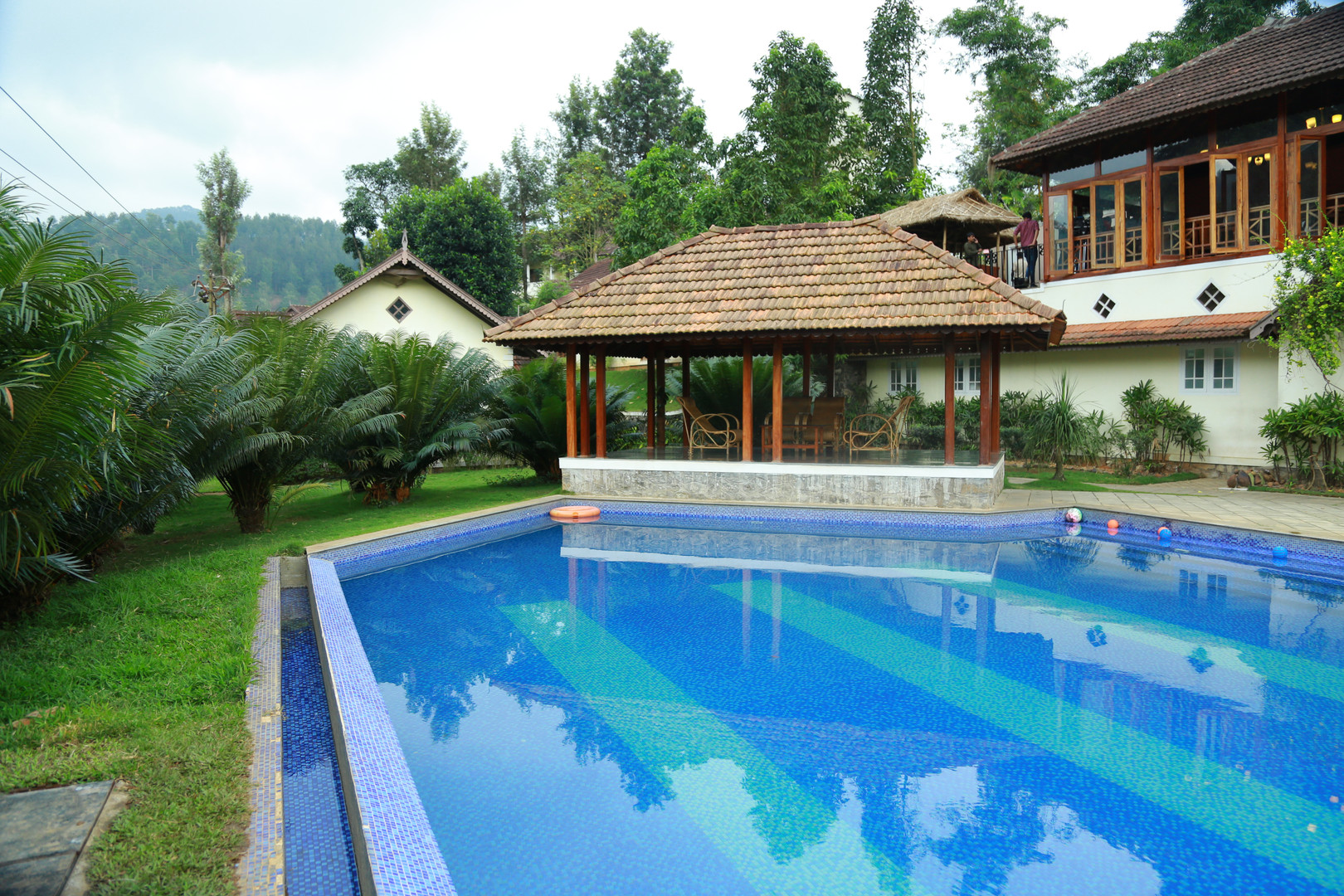 Swimming Pool View