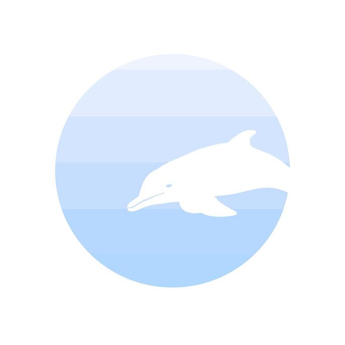 Dolphin Arcade Logo 1.jpg