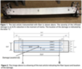 Fiber Optic Sensors - Shape Sensing