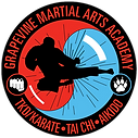 Grapevine Academy patch+Aikido.png