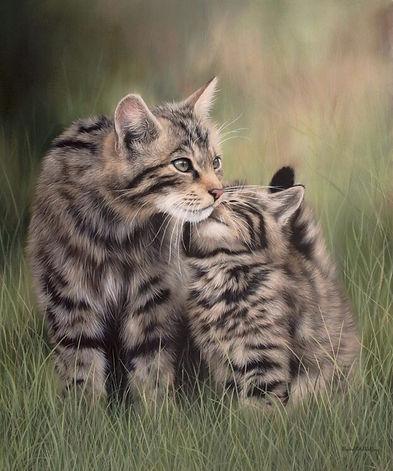 Scottish Wildcats, Animal Painting