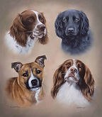 phillipa dogs commission1.jpg