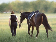 horsecommission1.jpg