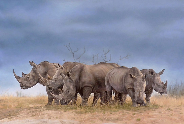 white rhino painting