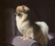 Tibetan Spaniel Dog Painting