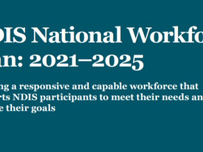 The NDIS Workforce Plan and the Frontline Reality