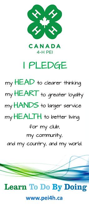 Pledge Banner (2020).png
