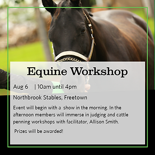 Project Workshop Day 5x5 images - Equine.png