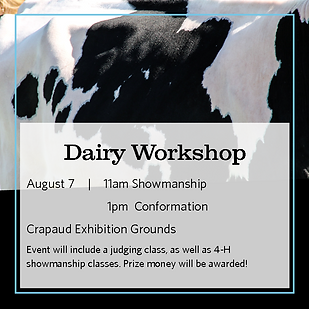 Project Workshop Day 5x5 images - Dairy.png