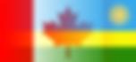 hybrid_flag_gradient.png