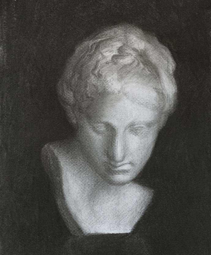 Bust of young woman •