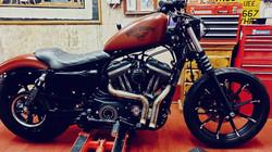 Sportster 883 custom bobber