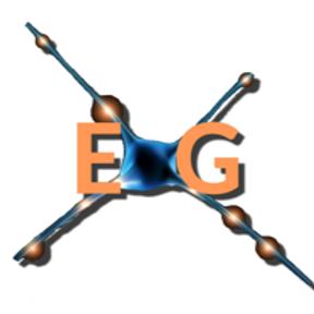 EXG Software Services