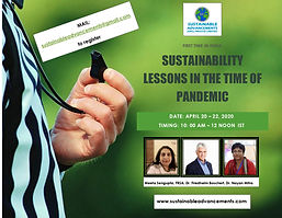 SUSTAINABILITY LESSONS IN THE TIME OF PA