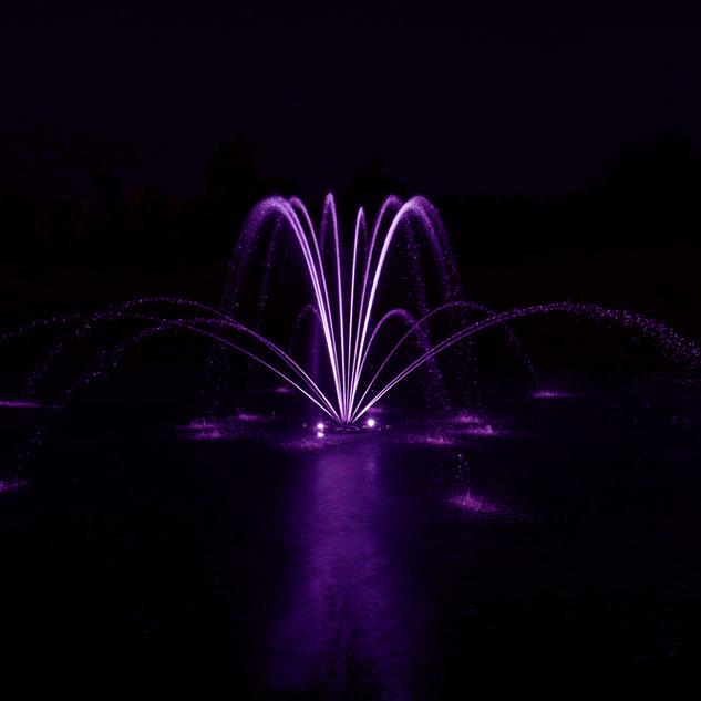 Airmax Purple.jpg