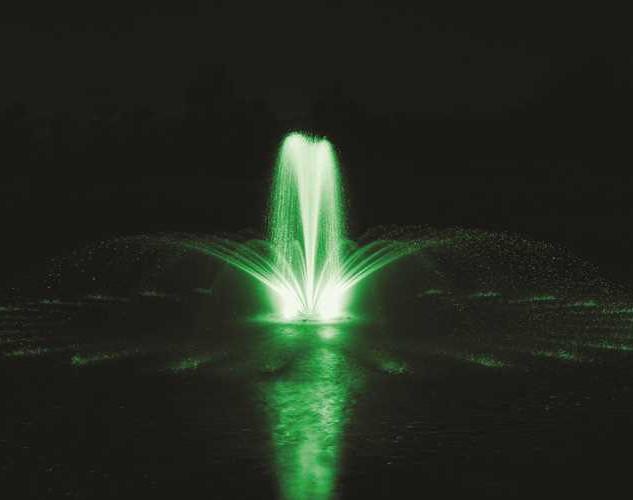 Airmax green.jpeg