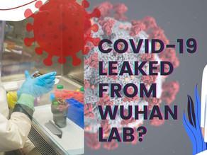 Covid-19 Leaked From Wuhan Lab? This is WHAT we know so far.