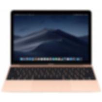 Apple-MacBook-12-256-Go-D-8-Go-RAM-Intel