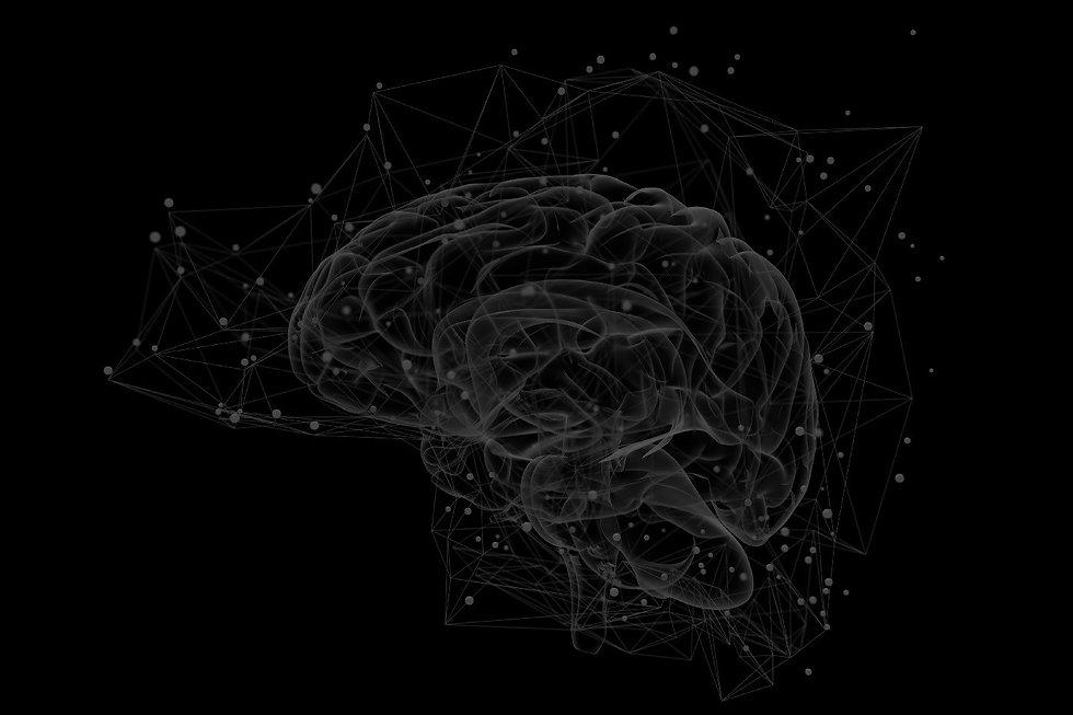 brainmap_edited_edited.jpg