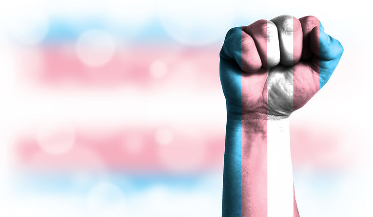 Flag of Transgender painted on male fist