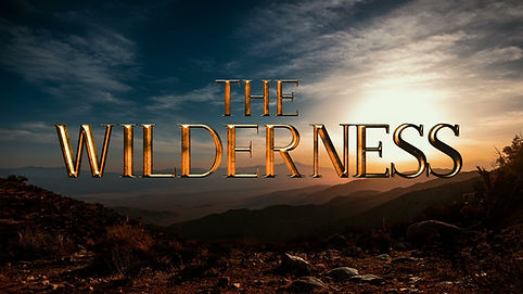 THE WILDERNESS FRONT PAGE COVER .jpg