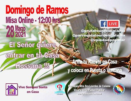 Domingo Ramos Online 2021.jpg