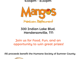 Dining for Dogs at Mangos