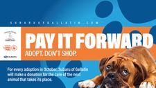 Gallatin Subaru Loves Pets Month