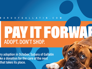 Gallatin Subaru Loves Pets Month