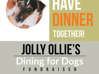Dining with Dogs at Jolly Ollie's Pizza + Pub
