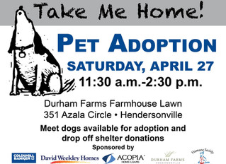 Join Us for Pet Adoption Saturday