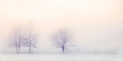 winter-landscape-2571788_1920.jpg