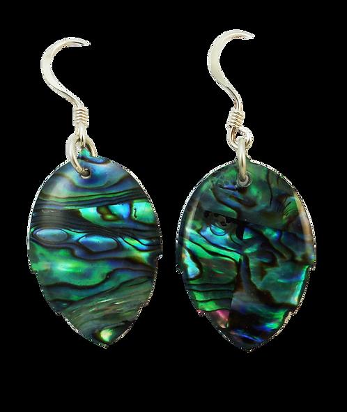 Round Leaf Paua Shell Earring