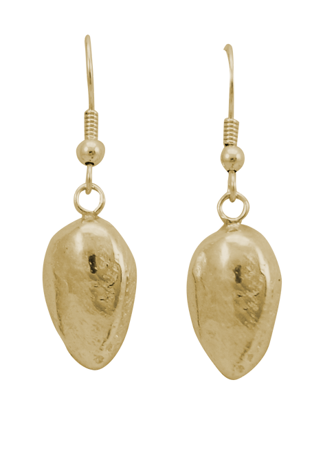 Paua Shell Drop Earring