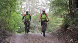 Two cyclist mountain biking in bush