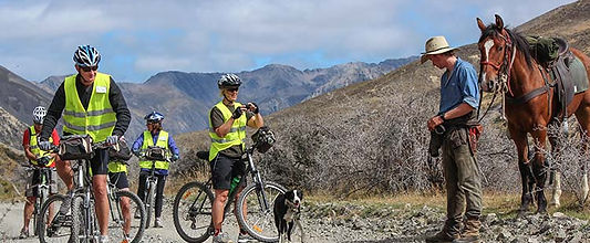 Cyclist's talking to shepherd with a horse and dog on high country road