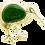 Thumbnail: Kiwi Brooch