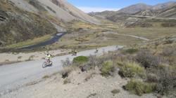 Small group biking along road