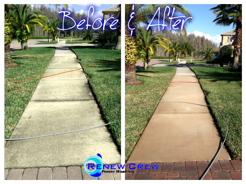 Renew Crew Power Washing - Tampa Bay