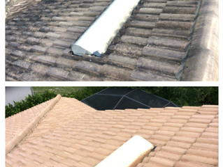 Tampa Roof Cleaning - Renewed Image