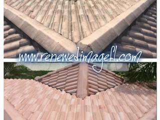 Roof Cleaning, Tampa FL - Renewed Image Power Washing