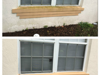 Providing a Renewed Image to the Tampa Bay area, one pressure washing job at a time!